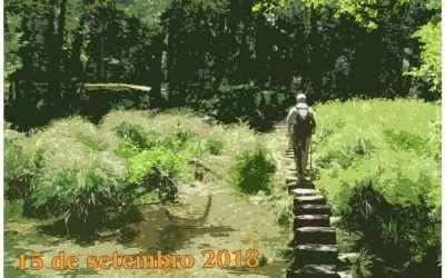 Reglamento PonteAndar 2018