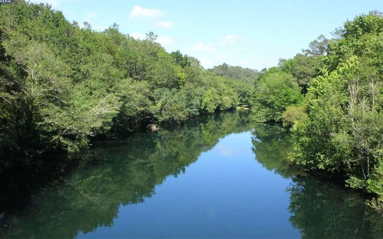 Senda do Río Lérez